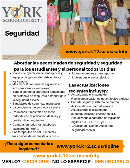 Safety & Security Flyer in Spanish